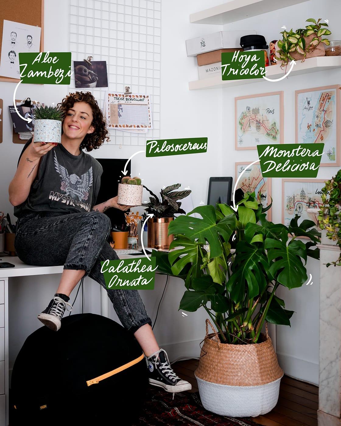Livraison de fleurs et plantes avec Bergamotte à Bordeaux - Tribu Télétravail - Montera, décoration d'intérieur, avis