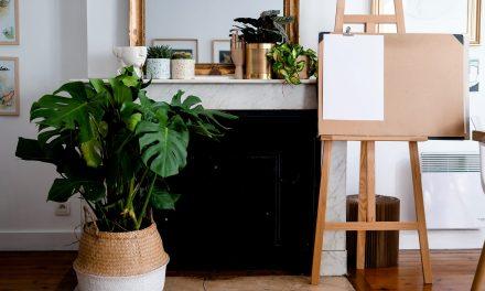 [J'ai testé] Livraison de fleurs et plantes à Bordeaux avec Bergamotte