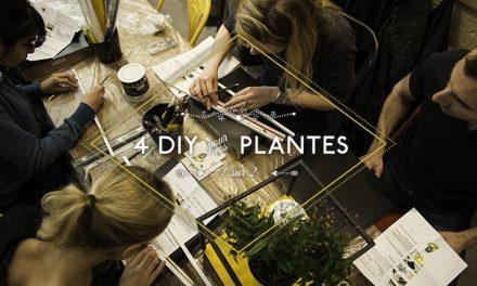 4 DIY pour vos plantes [1/2]