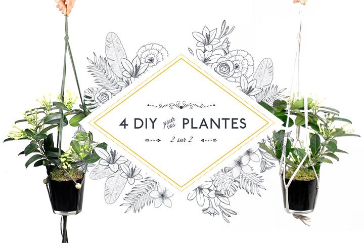 4 DIY pour vos plantes [2/2]