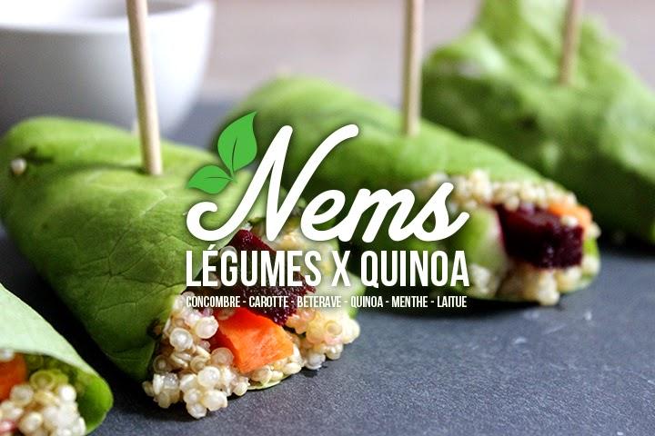 Nems 100% Légumes et Quinoa